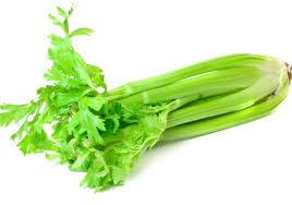 Celery Large