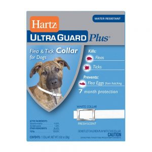 Hartz UltraGuard Plus Flea & Tick Collar – Dog
